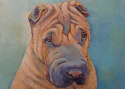 Hondenportretten